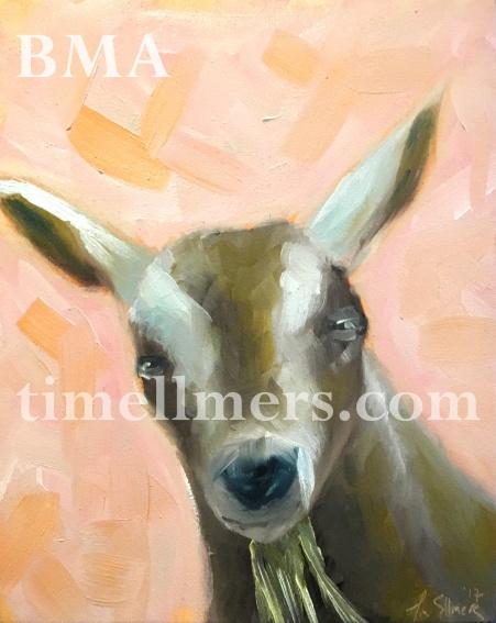 carl sandburg home goat.2017.1.logohistogram
