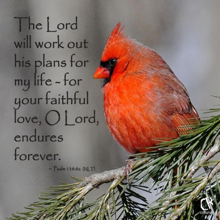 Red Cardinal Bible Verse